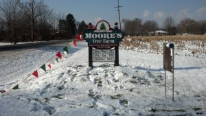 Moore's sign on the North side of 6 St. Rt. 619