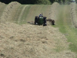 Raking ahead of the baler