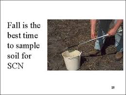 It is best to pull soil samples in the fall when soil is dry